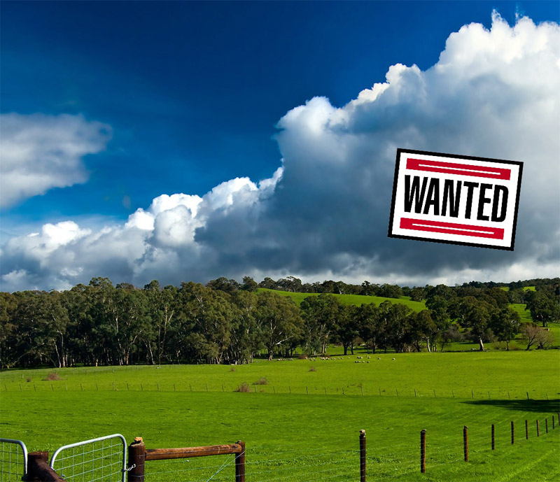 Land Wanted in Sussex, Surrey, Kent, Haywards Heath, Burgess Hill, Crawley, Uckfield, Heathfield, Chichester, Crowborough, Worthing, Hastings, Eastbourne,Horsham, East Grinstead, Lewes, Worthing, Gatwick, Brighton, Hove